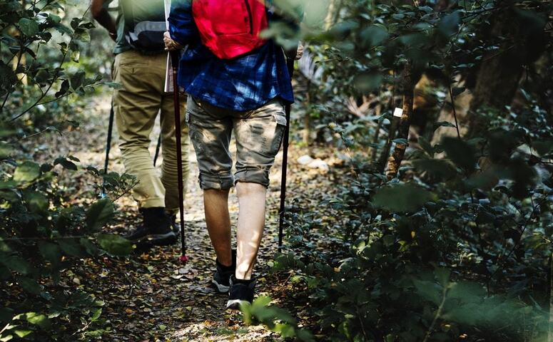 two travelers hiking in jungle