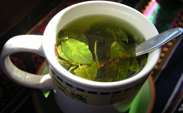 Coca tea in cup
